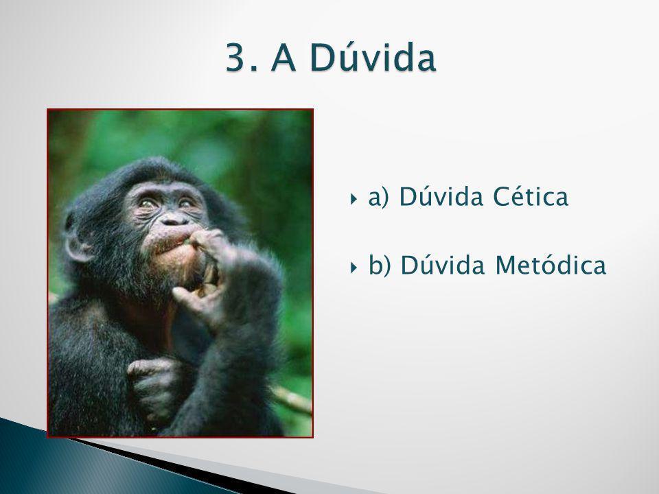  a) Dúvida Cética  b) Dúvida Metódica