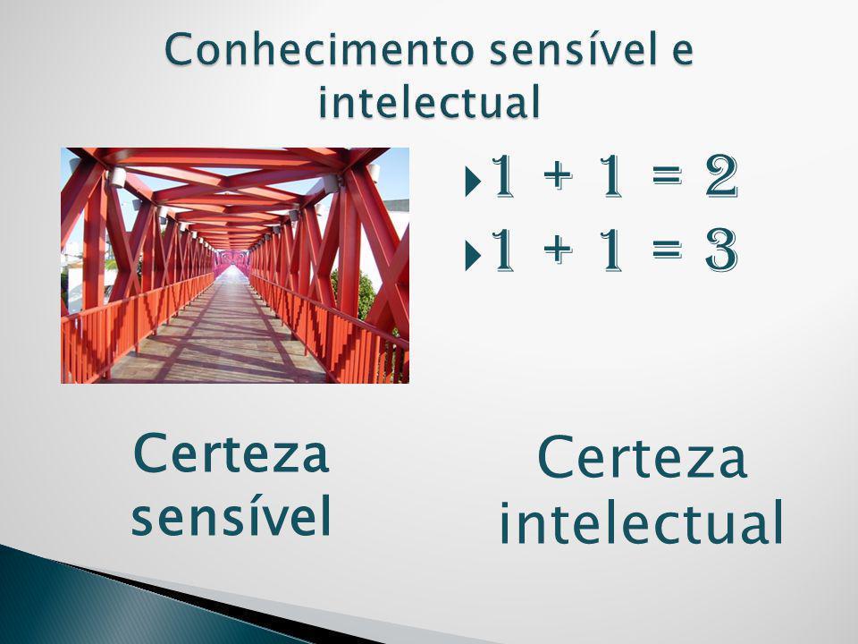  1 + 1 = 2  1 + 1 = 3 Certeza intelectual Certeza sensível