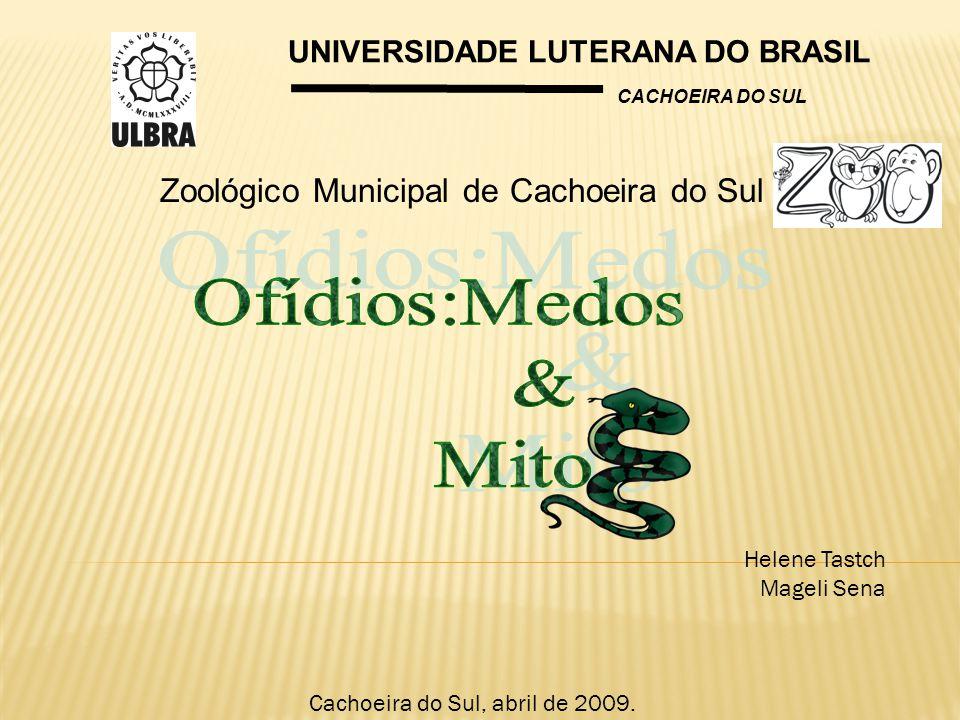 UNIVERSIDADE LUTERANA DO BRASIL CACHOEIRA DO SUL Helene Tastch Mageli Sena Cachoeira do Sul, abril de 2009. Zoológico Municipal de Cachoeira do Sul