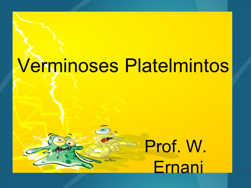Verminoses Platelmintos Prof. W. Ernani