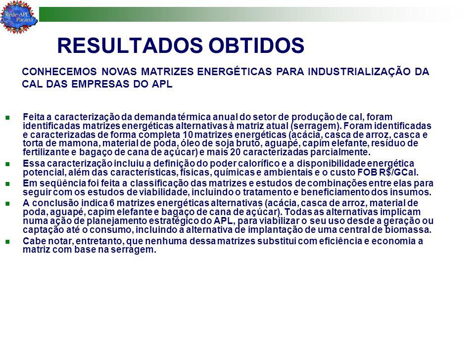 RESULTADOS OBTIDOS Feita a caracterização da demanda térmica anual do setor de produção de cal, foram identificadas matrizes energéticas alternativas à matriz atual (serragem).