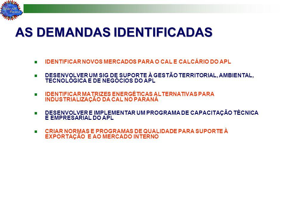 AS DEMANDAS IDENTIFICADAS IDENTIFICAR NOVOS MERCADOS PARA O CAL E CALCÁRIO DO APL DESENVOLVER UM SIG DE SUPORTE À GESTÃO TERRITORIAL, AMBIENTAL, TECNOLÓGICA E DE NEGÓCIOS DO APL IDENTIFICAR MATRIZES ENERGÉTICAS ALTERNATIVAS PARA INDUSTRIALIZAÇÃO DA CAL NO PARANÁ DESENVOLVER E IMPLEMENTAR UM PROGRAMA DE CAPACITAÇÃO TÉCNICA E EMPRESARIAL DO APL CRIAR NORMAS E PROGRAMAS DE QUALIDADE PARA SUPORTE À EXPORTAÇÃO E AO MERCADO INTERNO
