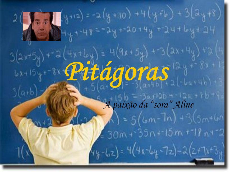 """Pitágoras A paixão da """"sora"""" Aline"""