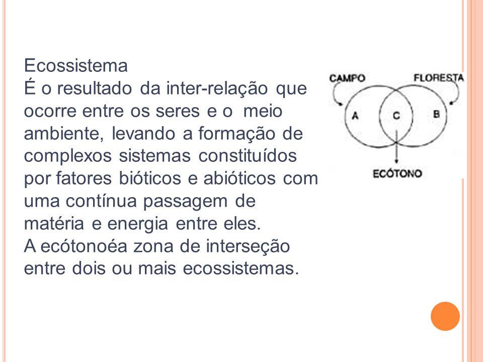 Ecossistema É o resultado da inter-relação que ocorre entre os seres e o meio ambiente, levando a formação de complexos sistemas constituídos por fato