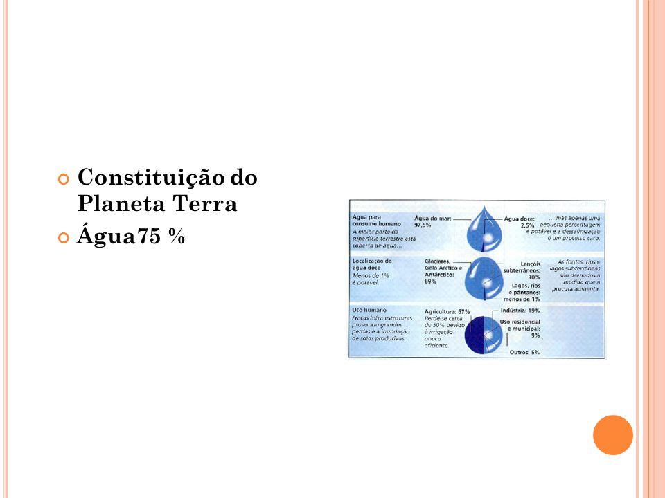 Constituição do Planeta Terra Água75 %