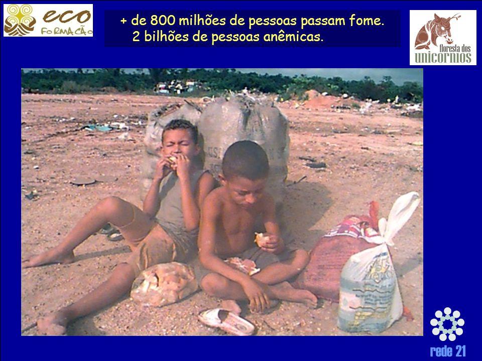 rede 21 + de 800 milhões de pessoas passam fome. 2 bilhões de pessoas anêmicas.