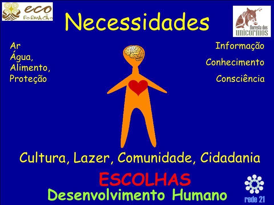 rede 21 Necessidades Ar Água, Alimento, Proteção Informação Conhecimento Consciência Cultura, Lazer, Comunidade, Cidadania ESCOLHAS Desenvolvimento Humano