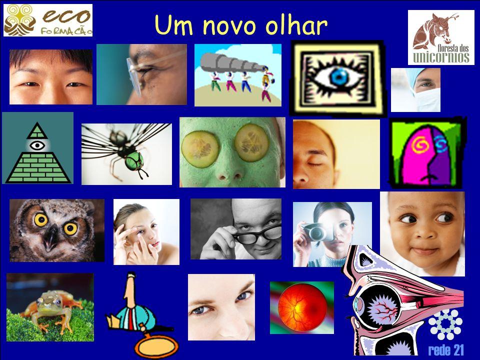 rede 21 Um novo olhar