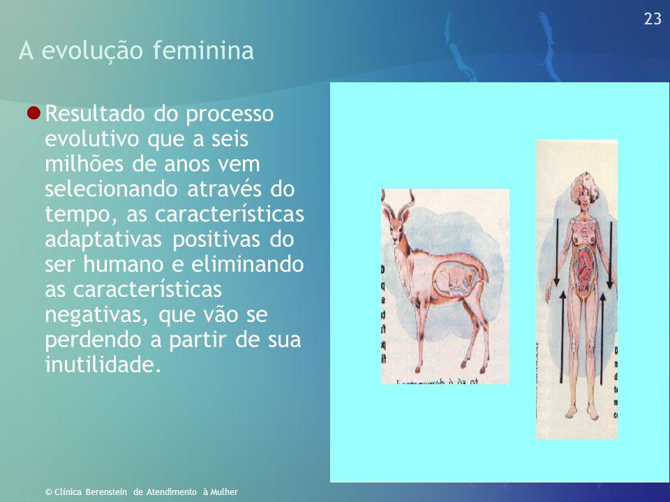 22 © Clínica Berenstein de Atendimento à Mulher Homens e mulheres: Os desafios na vida profissional  Do capitulo primeiro do gênesis:  Sesteava Adão