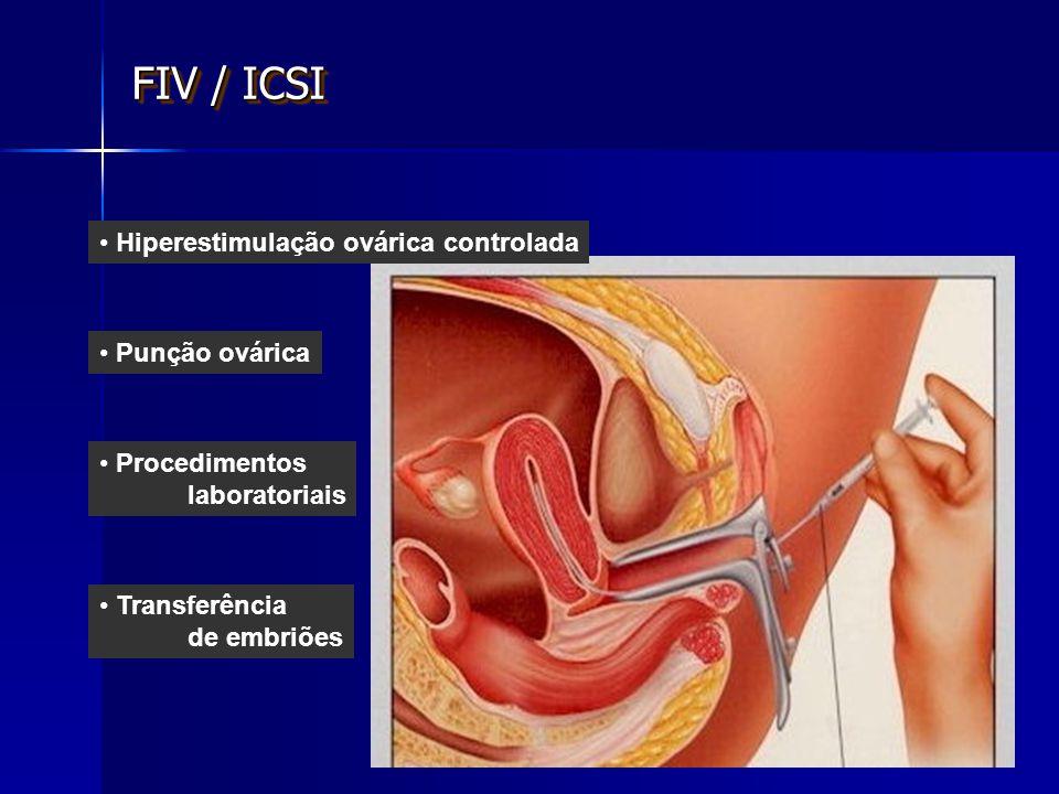 Procedimentos laboratoriais Punção ovárica Transferência de embriões Hiperestimulação ovárica controlada FIV / ICSI