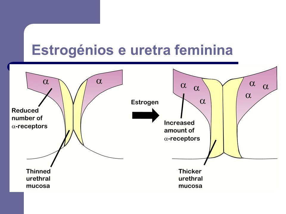 Estrogénios e uretra feminina