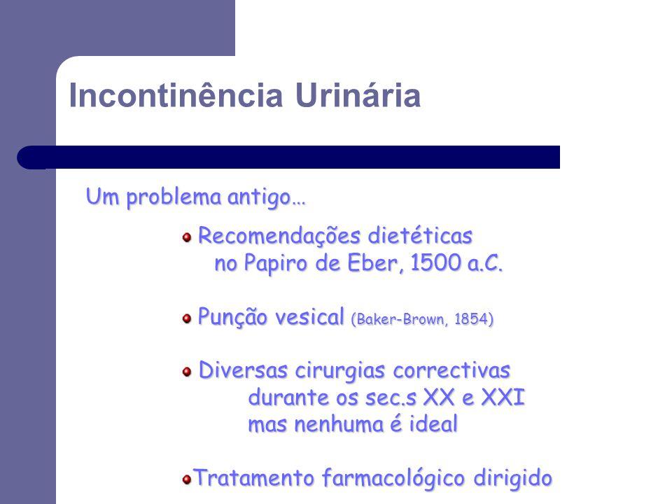 Um problema antigo… Recomendações dietéticas Recomendações dietéticas no Papiro de Eber, 1500 a.C. Punção vesical (Baker-Brown, 1854) Punção vesical (
