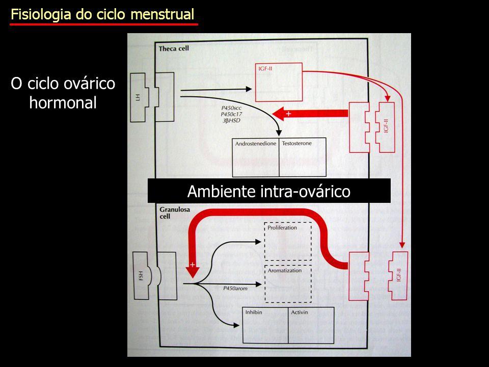 Ambiente intra-ovárico O ciclo ovárico hormonal