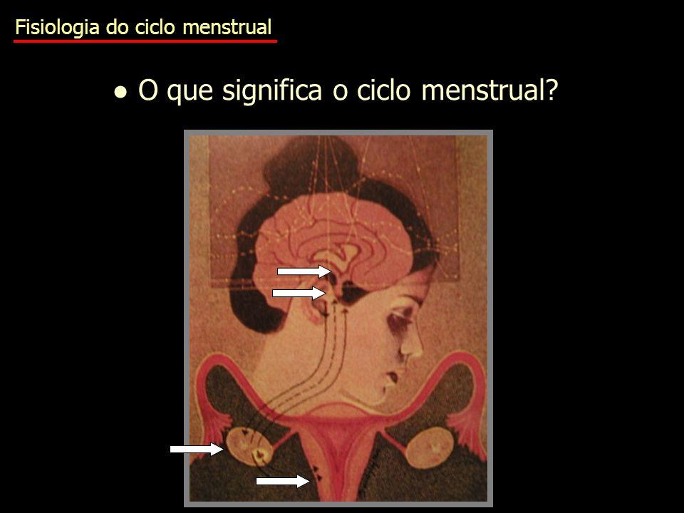 Fisiologia do ciclo menstrual ● O que significa o ciclo menstrual?