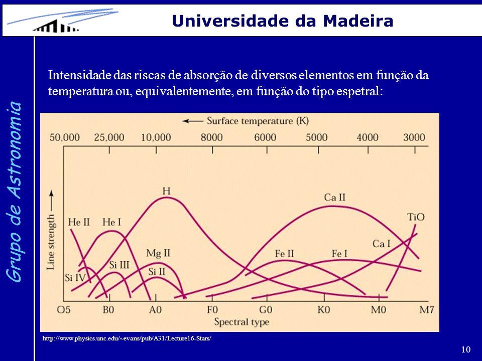 10 Grupo de Astronomia Universidade da Madeira http://www.physics.unc.edu/~evans/pub/A31/Lecture16-Stars/ Intensidade das riscas de absorção de divers