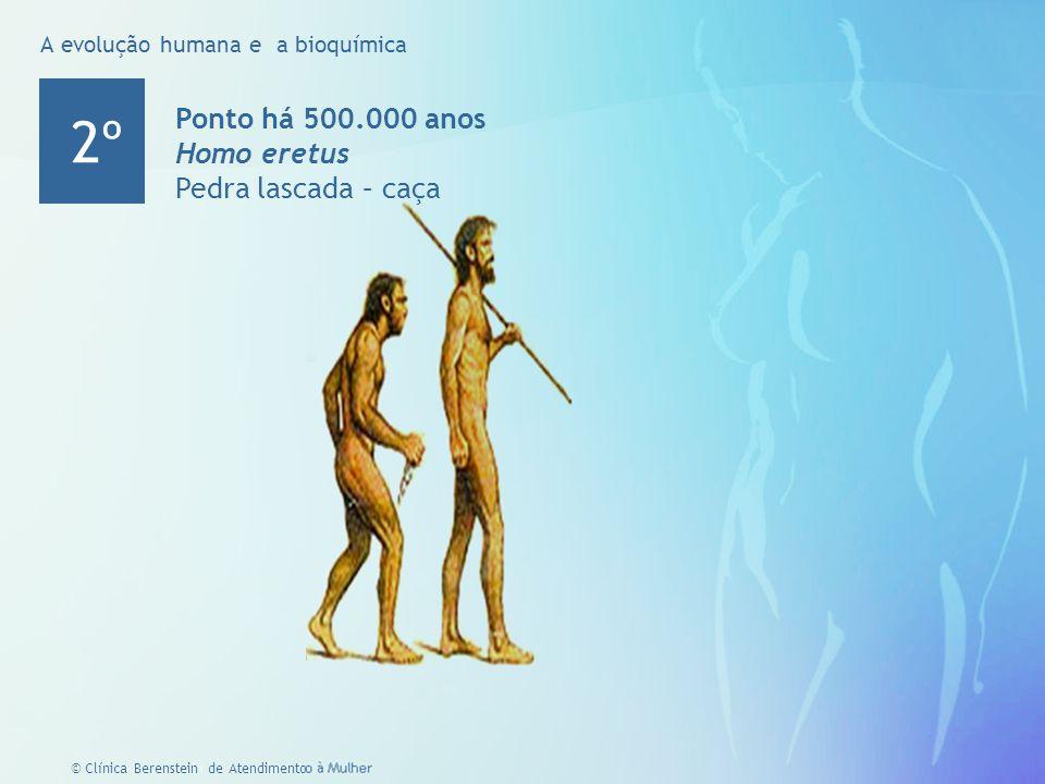 4 © Clínica Berenstein de Atendimento à Mulher Ponto há 500.000 anos Homo eretus Pedra lascada – caça 2º A evolução humana e a bioquímica