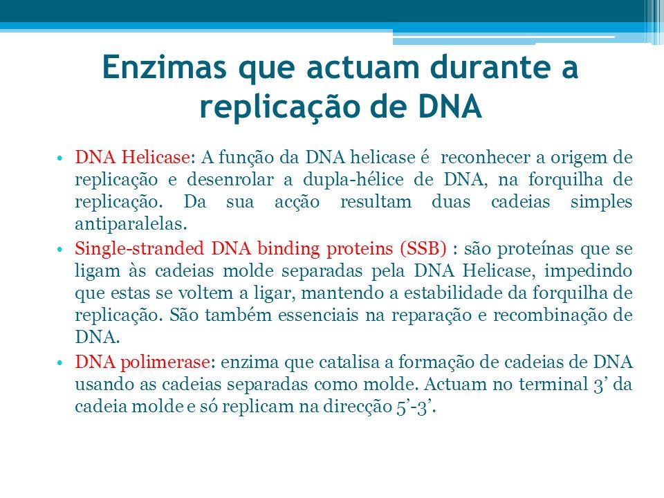Enzimas que actuam durante a replicação de DNA DNA Helicase: A função da DNA helicase é reconhecer a origem de replicação e desenrolar a dupla-hélice de DNA, na forquilha de replicação.
