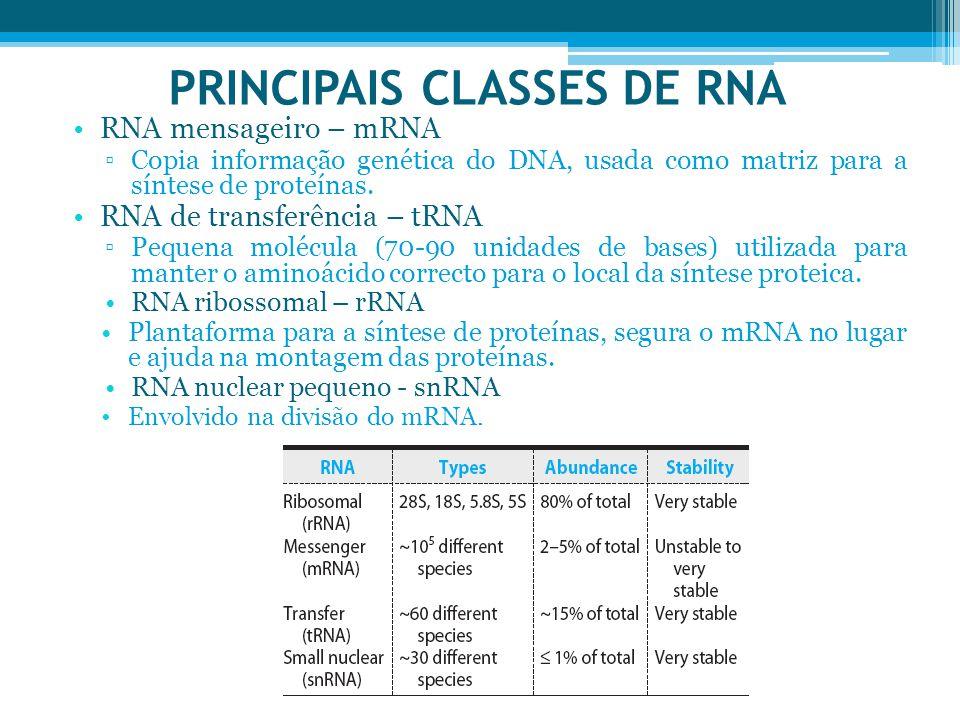 PRINCIPAIS CLASSES DE RNA RNA mensageiro – mRNA ▫Copia informação genética do DNA, usada como matriz para a síntese de proteínas. RNA de transferência