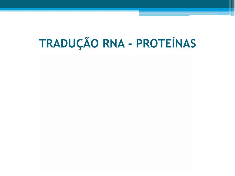 TRADUÇÃO RNA - PROTEÍNAS
