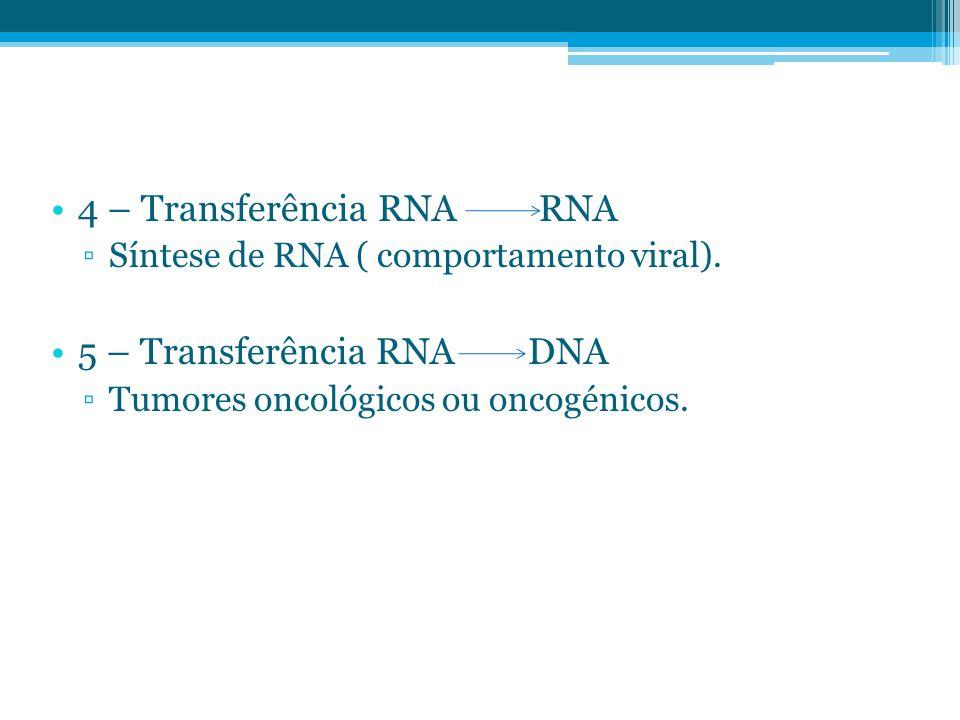 4 – Transferência RNA RNA ▫Síntese de RNA ( comportamento viral). 5 – Transferência RNA DNA ▫Tumores oncológicos ou oncogénicos.