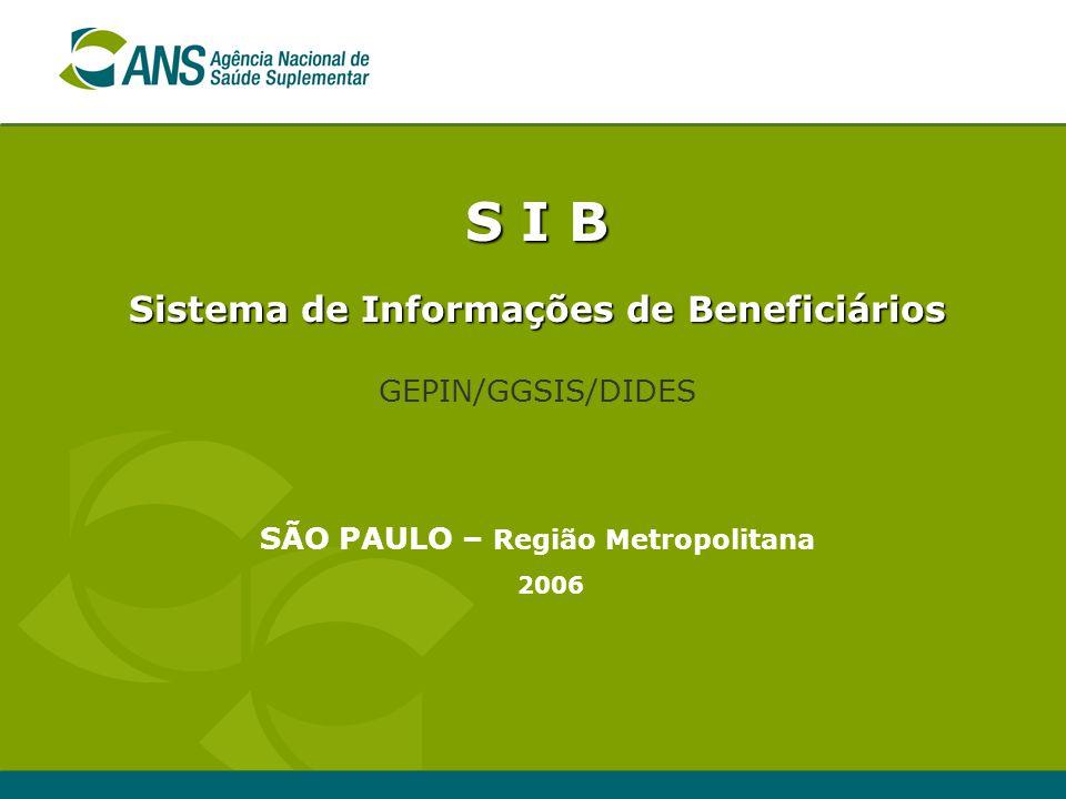 S I B Sistema de Informações de Beneficiários GEPIN/GGSIS/DIDES SÃO PAULO – Região Metropolitana 2006