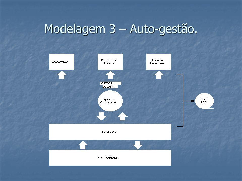Modelagem 3 – Auto-gestão.