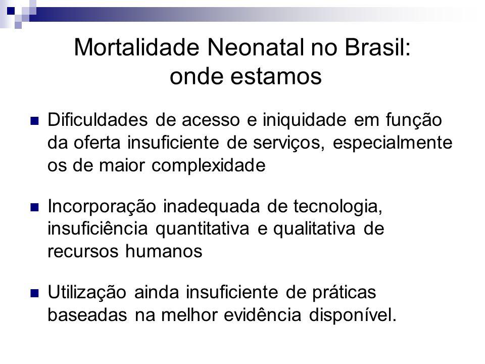 Rio de Janeiro, década de 90 Déficit de leitos obstétricos e neonatais no MRJ Déficit em torno de 200 leitos neonatais na Região Metropolitana II Superlotação em maternidades de risco MRJ Rede fragmentada