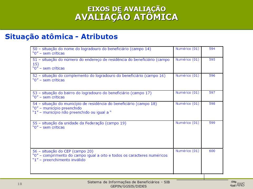 Sistema de Informações de Beneficiários - SIB GEPIN/GGSIS/DIDES 18 EIXOS DE AVALIAÇÃO AVALIAÇÃO ATÔMICA Situação atômica - Atributos