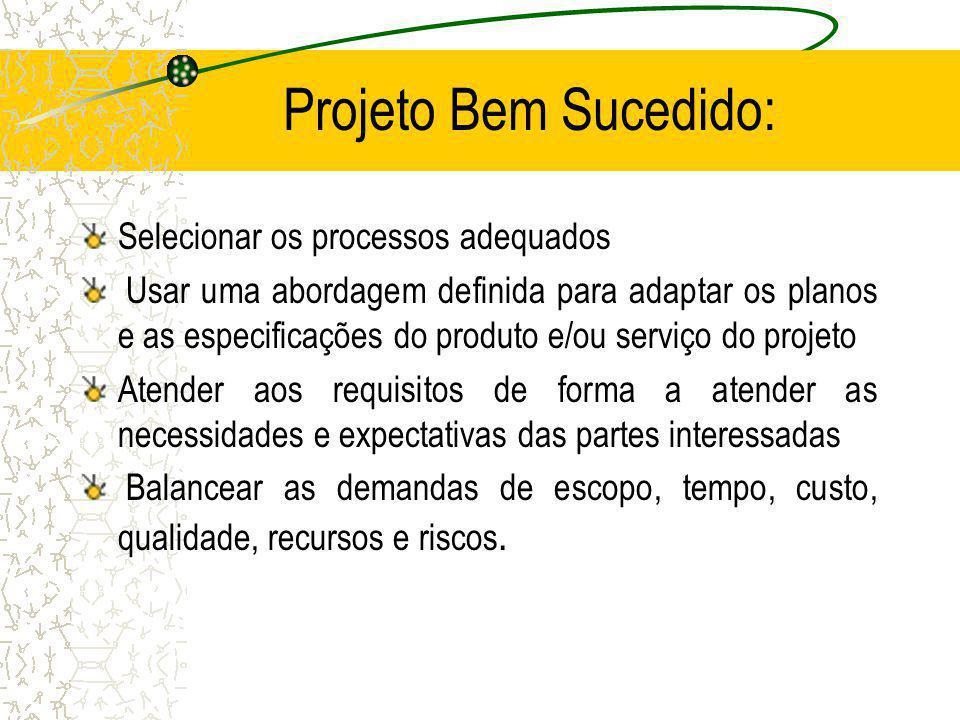 Projeto Bem Sucedido: Selecionar os processos adequados Usar uma abordagem definida para adaptar os planos e as especificações do produto e/ou serviço