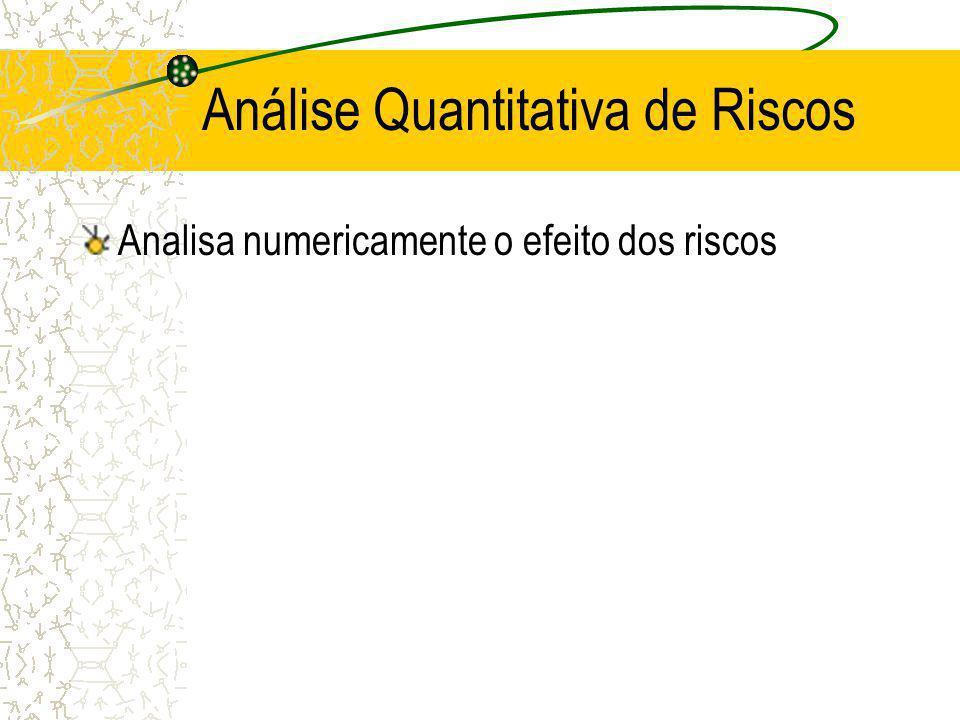 Análise Quantitativa de Riscos Analisa numericamente o efeito dos riscos