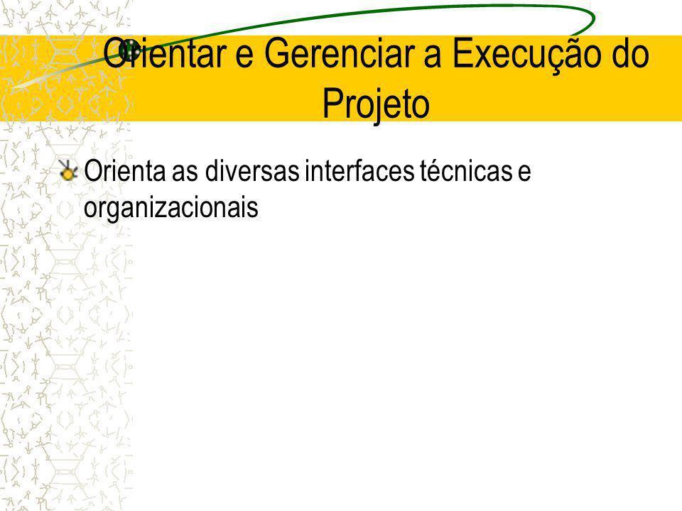 Orientar e Gerenciar a Execução do Projeto Orienta as diversas interfaces técnicas e organizacionais