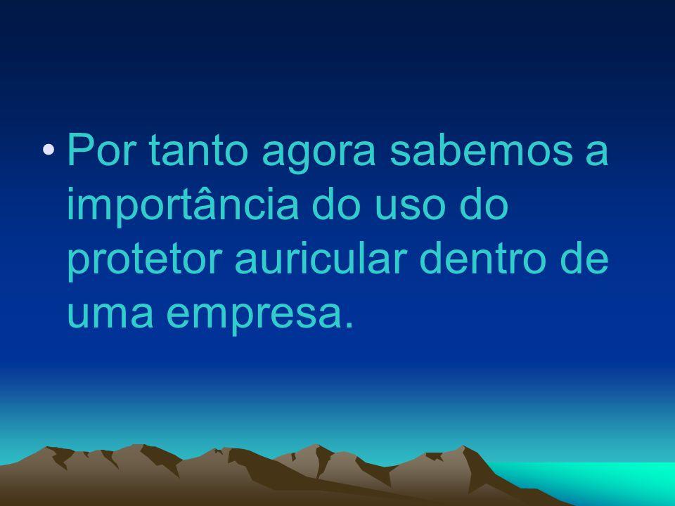 Por tanto agora sabemos a importância do uso do protetor auricular dentro de uma empresa.