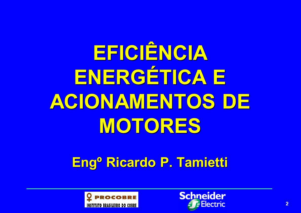 2 EFICIÊNCIA ENERGÉTICA E ACIONAMENTOS DE MOTORES Engº Ricardo P. Tamietti