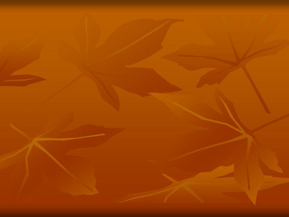 A venda perdida Após receber uma resposta que pode ser considerada como objeção definitiva, o vendedor deve reconhecer a impossibilidade da venda e através de uma solicitação sincera perguntar ao cliente em qual aspecto falhou ou qual característica o cliente não gostou do produto.