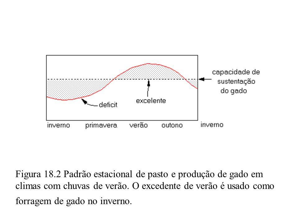 Figura 18.2 Padrão estacional de pasto e produção de gado em climas com chuvas de verão.