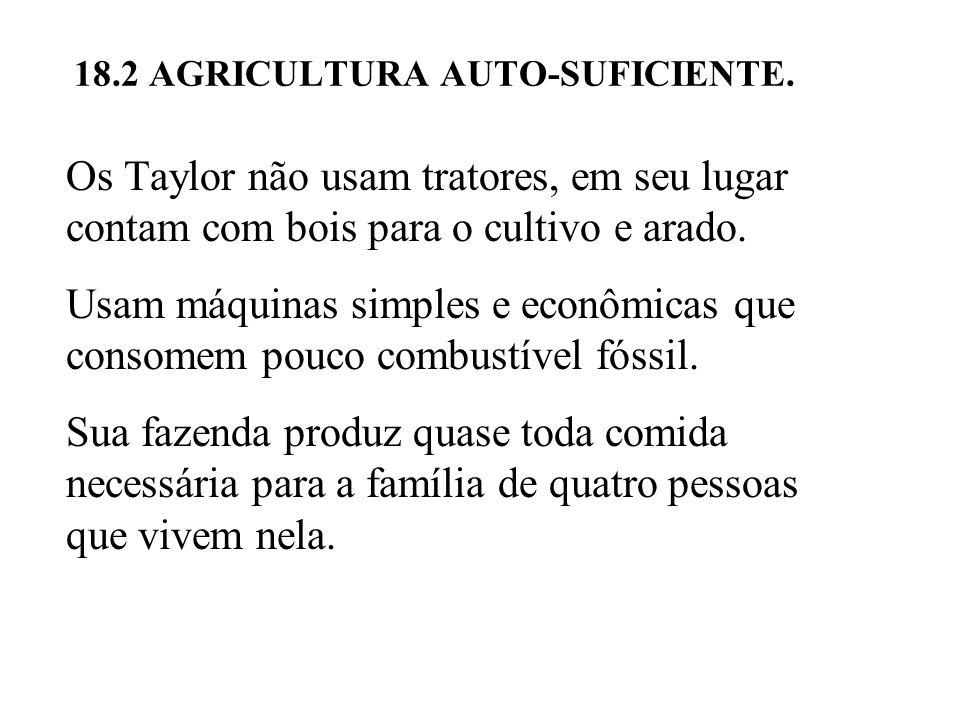 Os Taylor não usam tratores, em seu lugar contam com bois para o cultivo e arado.