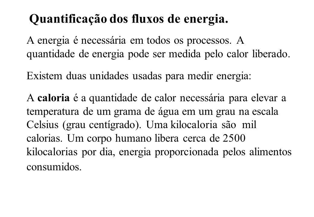 Quantificação dos fluxos de energia. A energia é necessária em todos os processos. A quantidade de energia pode ser medida pelo calor liberado. Existe
