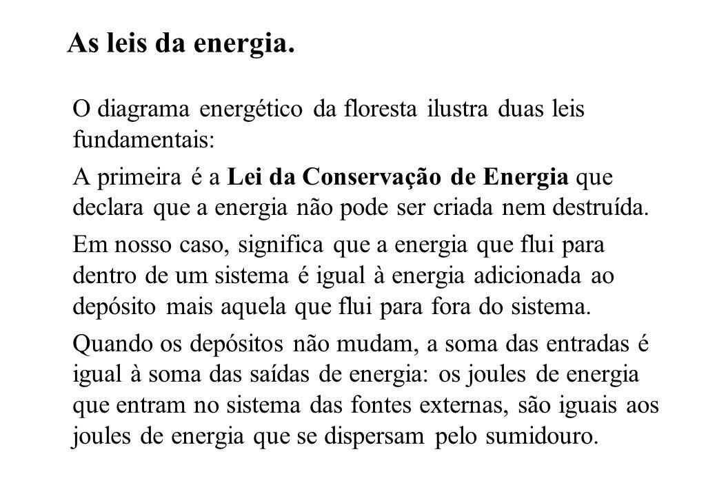 As leis da energia. O diagrama energético da floresta ilustra duas leis fundamentais: A primeira é a Lei da Conservação de Energia que declara que a e