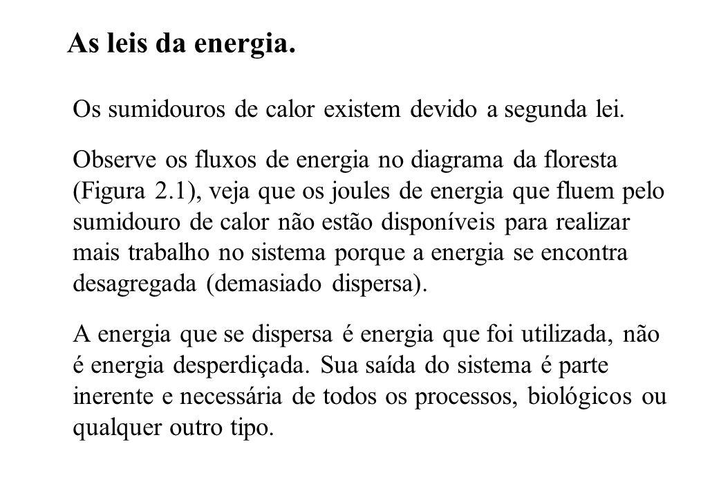 As leis da energia. Os sumidouros de calor existem devido a segunda lei. Observe os fluxos de energia no diagrama da floresta (Figura 2.1), veja que o