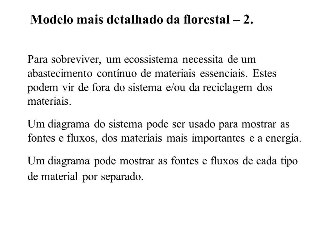 Modelo mais detalhado da florestal – 2. Para sobreviver, um ecossistema necessita de um abastecimento contínuo de materiais essenciais. Estes podem vi
