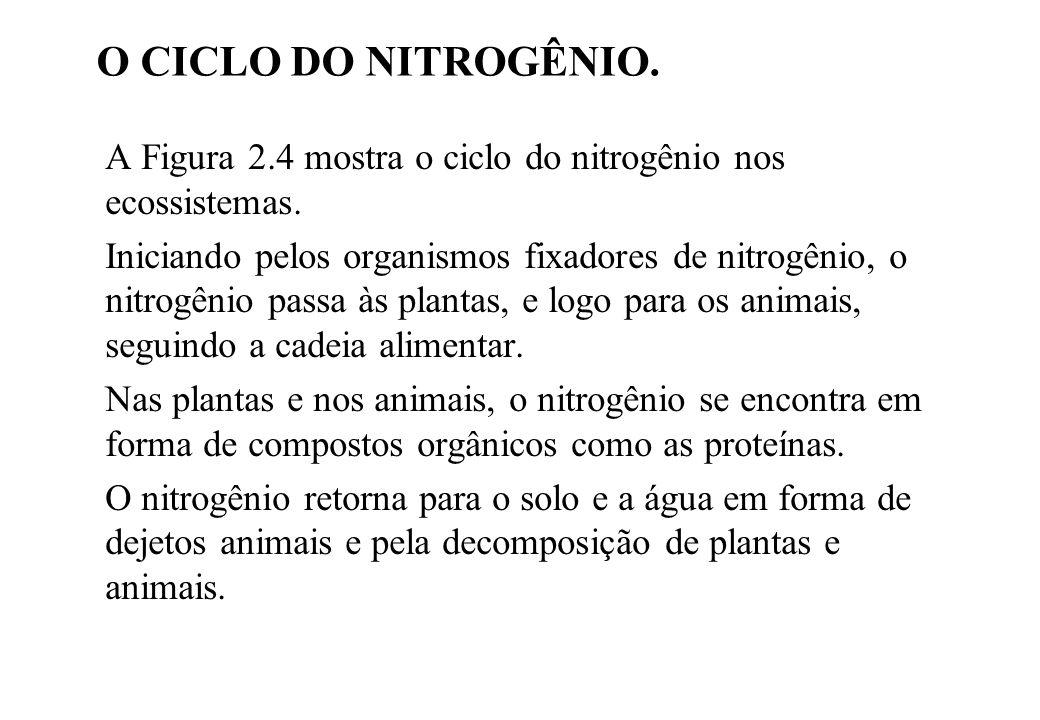 A Figura 2.4 mostra o ciclo do nitrogênio nos ecossistemas. Iniciando pelos organismos fixadores de nitrogênio, o nitrogênio passa às plantas, e logo
