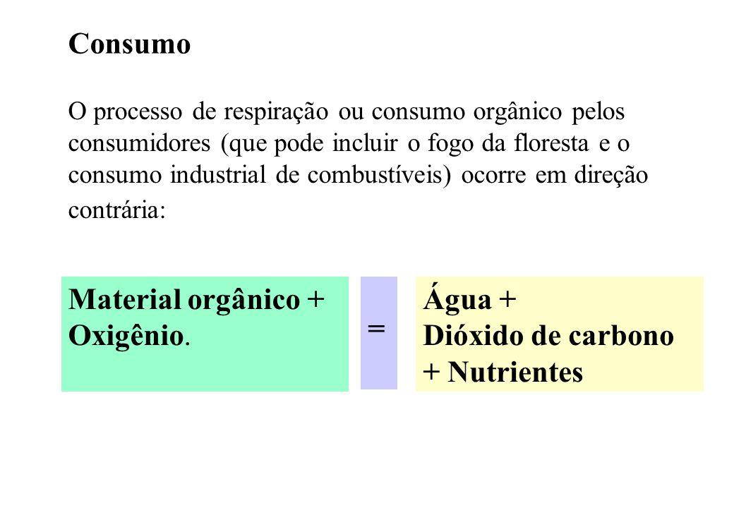 Consumo O processo de respiração ou consumo orgânico pelos consumidores (que pode incluir o fogo da floresta e o consumo industrial de combustíveis) o