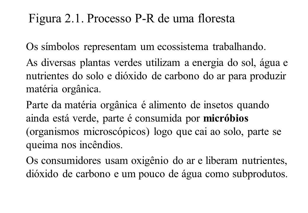 Figura 2.1. Processo P-R de uma floresta Os símbolos representam um ecossistema trabalhando. As diversas plantas verdes utilizam a energia do sol, águ