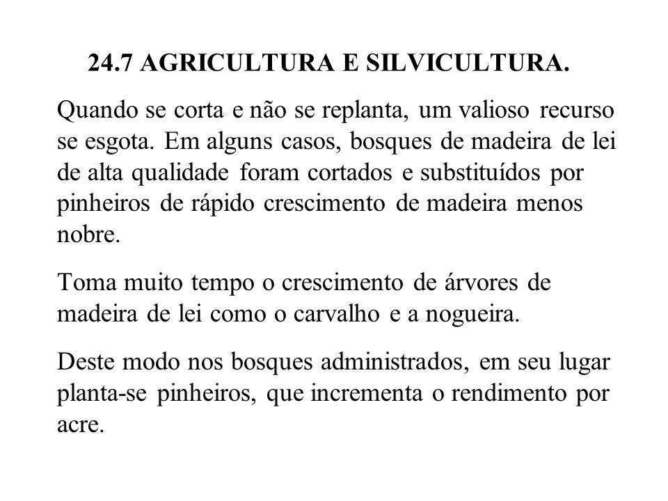 24.7 AGRICULTURA E SILVICULTURA. Quando se corta e não se replanta, um valioso recurso se esgota. Em alguns casos, bosques de madeira de lei de alta q