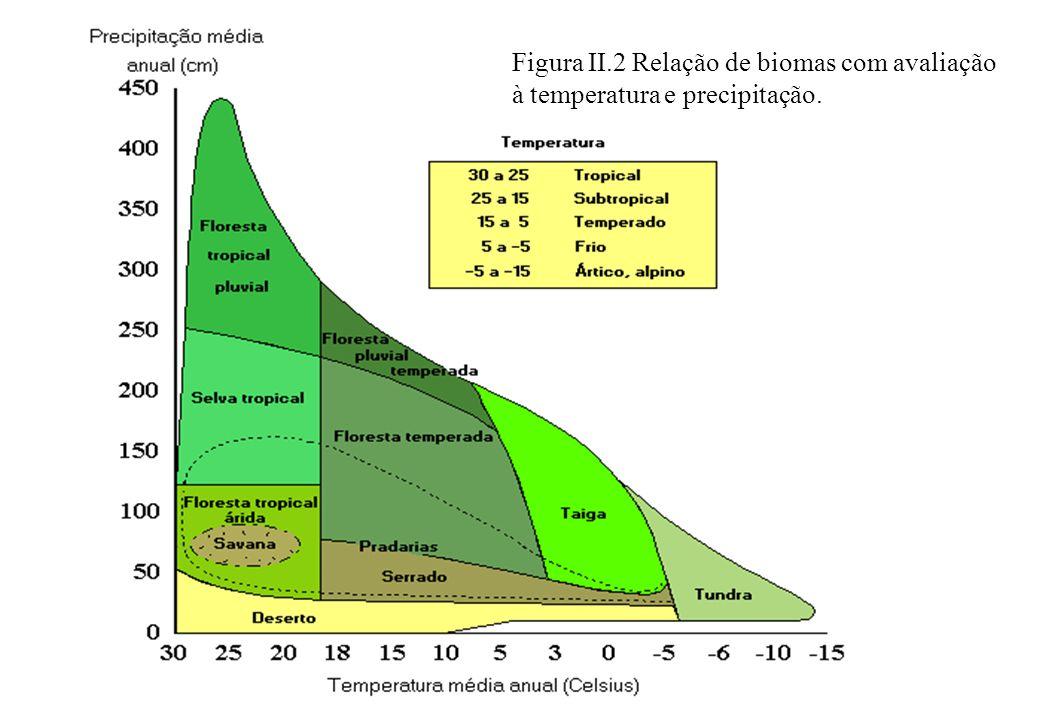 Figura II.2 Relação de biomas com avaliação à temperatura e precipitação.