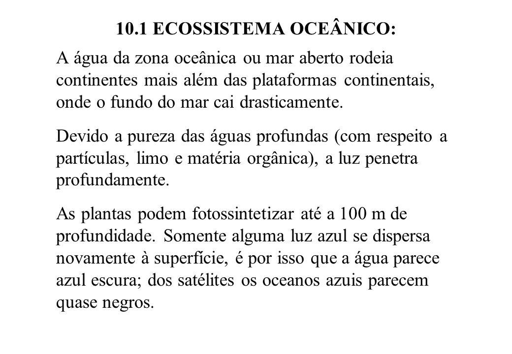 10.1 ECOSSISTEMA OCEÂNICO: A água da zona oceânica ou mar aberto rodeia continentes mais além das plataformas continentais, onde o fundo do mar cai dr