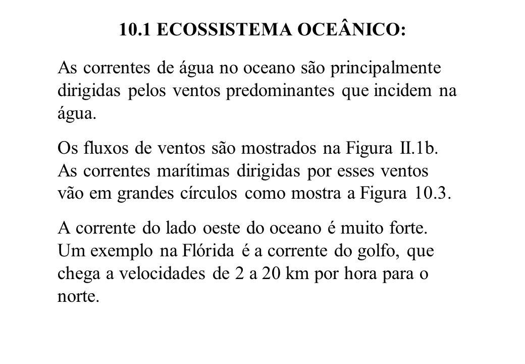 10.1 ECOSSISTEMA OCEÂNICO: As correntes de água no oceano são principalmente dirigidas pelos ventos predominantes que incidem na água. Os fluxos de ve
