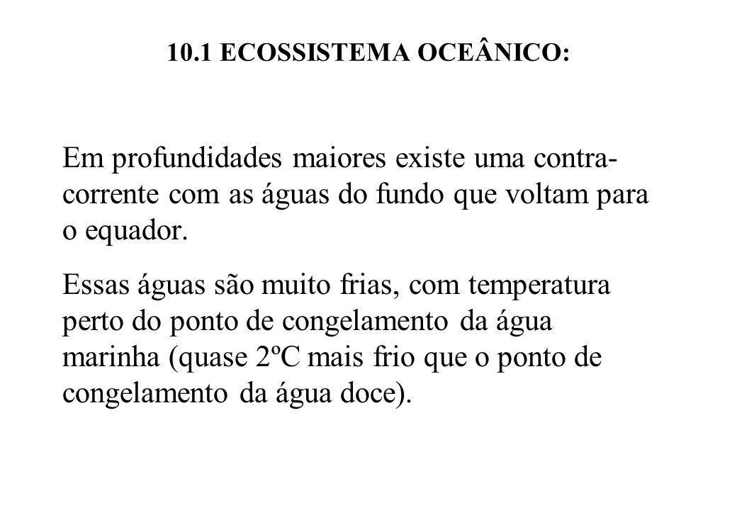 10.1 ECOSSISTEMA OCEÂNICO: Em profundidades maiores existe uma contra- corrente com as águas do fundo que voltam para o equador. Essas águas são muito