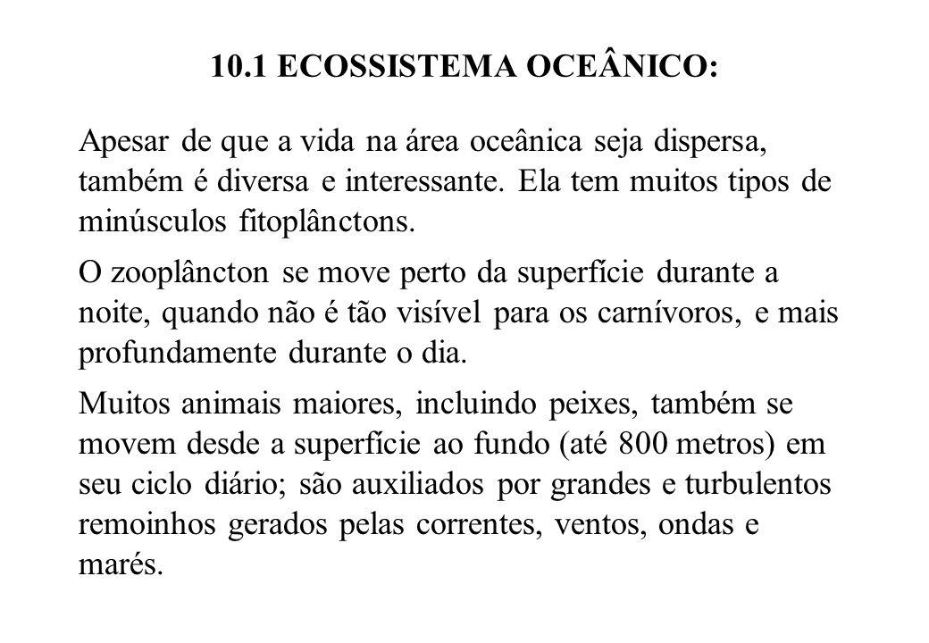 10.1 ECOSSISTEMA OCEÂNICO: Apesar de que a vida na área oceânica seja dispersa, também é diversa e interessante. Ela tem muitos tipos de minúsculos fi