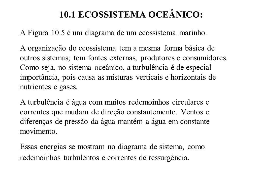10.1 ECOSSISTEMA OCEÂNICO: A Figura 10.5 é um diagrama de um ecossistema marinho. A organização do ecossistema tem a mesma forma básica de outros sist